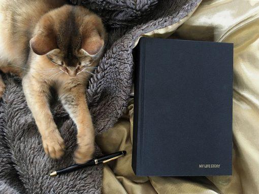 My Life Story – Diary
